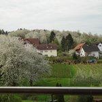 Photo of Gasthof Rose