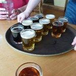 Shipyard Beer Samples