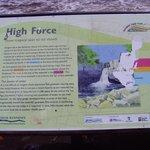 High Force