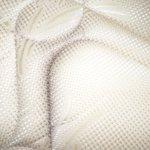 mould on mattress