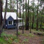 Studio - Silvertop Cottage