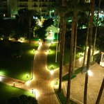Gardens at night