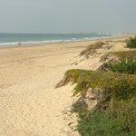 La impoluta y larguisima bandera azul Playa La Barrosa.