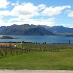 Rippon Vineyard about 5 min from the B&B