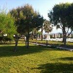 Garten zum Strand
