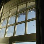 Dreckige Fenster