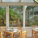 The Sherwood bar conservatory surround by plants