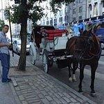 Horse Drawn Carriage NY