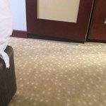 Äcklig heltäckande matta med slitna möbler!