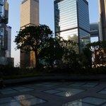 Far East Finance Centre  - The bronze colour building
