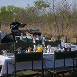 Final breakfast, out in the bush