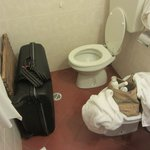 Toilet and luggage-room