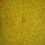 Stain on carpet next to the bed