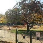 Children playground  Letna
