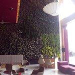 Lobby decorado con los hermosos jardines verticales
