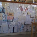 wall of menus at Hungry Pelican