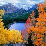 Autumn Aspen above Bear Lake by James Frank