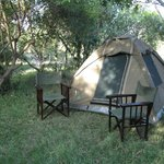 "Notre ""safari tent"" parfaite"