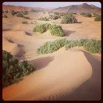 The dunes outside Nomad Palace