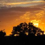 Flaming Sunsets at Los Poblanos
