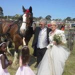 I like Weddings