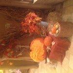 Halloween display!