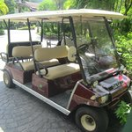 The golf buggy