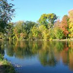 Beyer's Pond