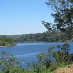 The Zoo is on the banks of the Shoalhaven River about 4kms from Nowra.