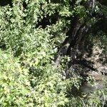 The Site of the Elk Creek Bridge Skirmish
