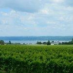 Beautiful winery on Seneca Lake