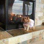 nice toasty fireplace dog friendly!!!