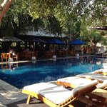 Hotel consists of pool , bar and restsurant in background