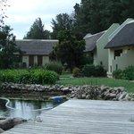 Een deel van de tuin+accommodaties