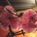 Orchideen-Flair in der Gaststube