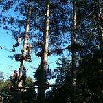 Il bosco è un'avventura tutta da vivere!
