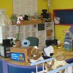 Bear Hospital