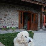 Photo de Hotel Cal Rei de Tallo