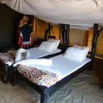 Foto de Tindiga Tented Camp