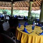 Restaurante La Palapa rodeado de naturaleza