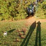 Walk w/the dogs to creek/bay.