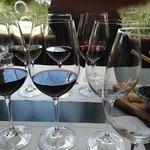 Degustação do Brunello de Montalcino