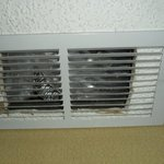 Trash in the A/C vent
