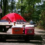 Twin Knobs Campground - Double site (non-electric with lake view)