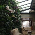 O hall social é aconchegante e charmoso, com sua parede de orquídeas