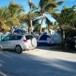 Car camping amid the palms