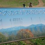 Ominekogen Nanairo Okaede