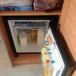 free fridge