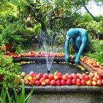 fuente y jardin