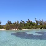 isola dei cervi